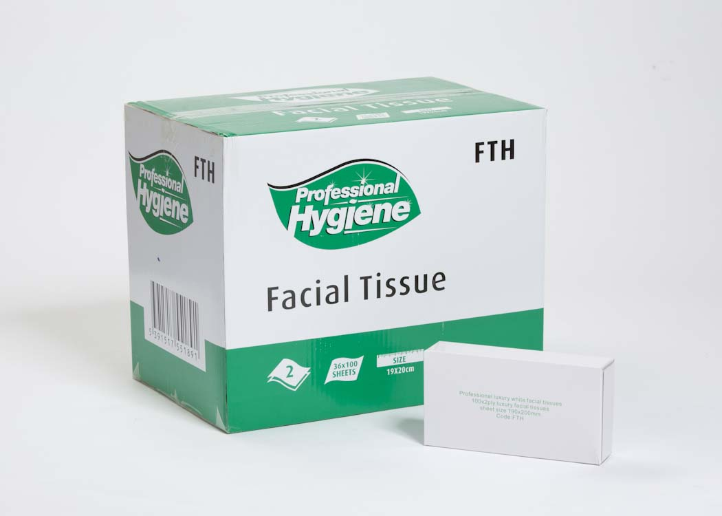 FACIAL TISSUE 2 PLY WHITE - 20 X 21cm image